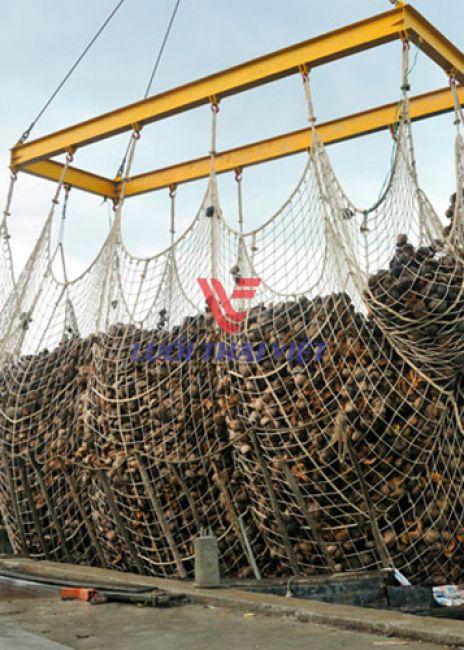 Lưới cẩu hàng